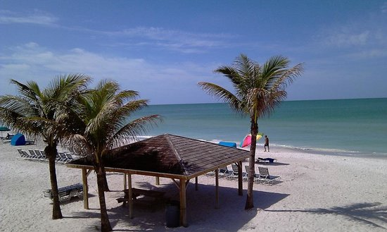 Gulf Beach Resort Motel: Der Blick aus dem Zimmer
