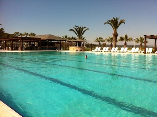 Piscine picture of venosa beach resort spa didim for Piscine brighton