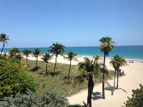 Lauderdale Beachside Hotel: the view!!
