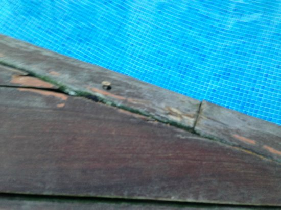 โรงแรมวินชีเทเนริเฟกอล์ฟ: dangerous hazard around pool edge protruding screws and loose damadged worn out NOT 4*