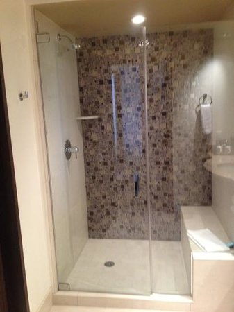 Blue Chip Casino and Hotel: shower high shower head bonus