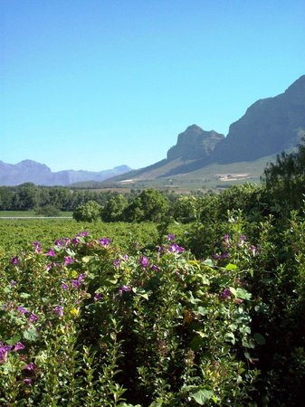 Vrede en Lust  Estate: Vrede en Lust Estate