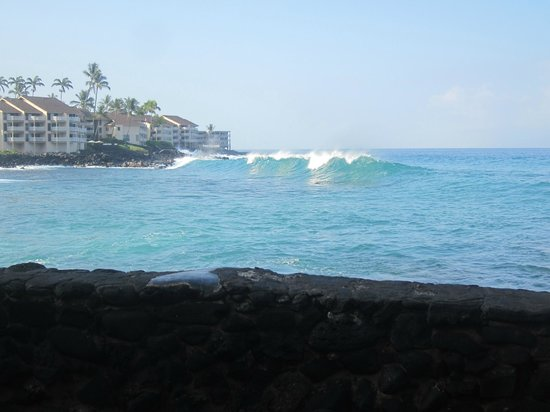 Kona Tiki Hotel : View from the pool deck 