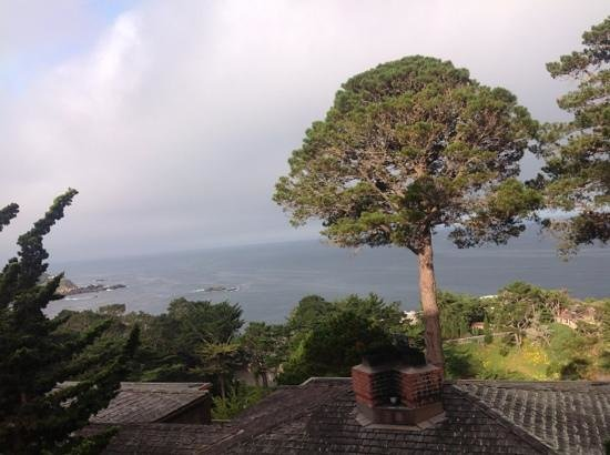 Hyatt Carmel Highlands: vista do quarto