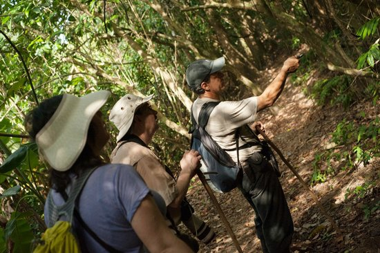 La Leona eco Lodge: We have the Best Guided Hikes in Corcovado National Park.