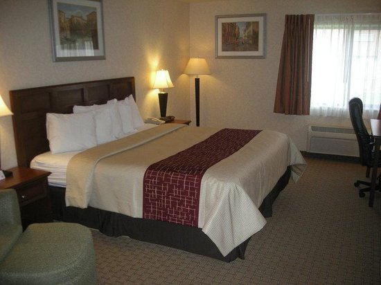 Red Roof Inn Gurnee - Waukegan: King Bed