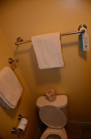 Tahoe Lakeshore Lodge and Spa: Tiny toilet/shower area
