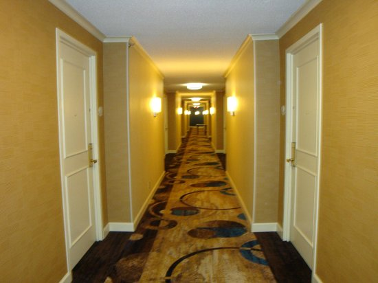 DoubleTree by Hilton Nashville-Downtown: hallway