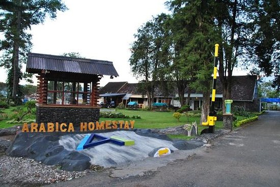 Arabica Homestay