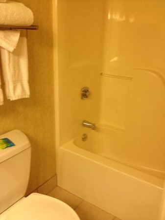 Radisson Paper Valley Hotel: the water pressure was great but don't care about the shower itself