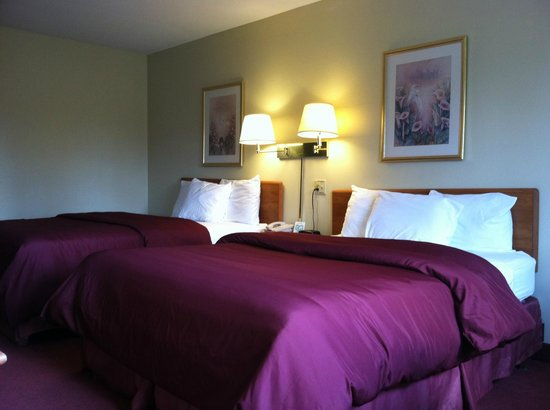 Econo Lodge - Ithaca: Guest Room, Two Beds