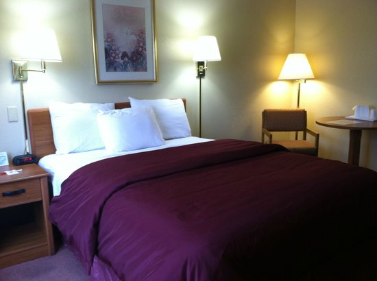 Econo Lodge - Ithaca: Guest Room, One Bed