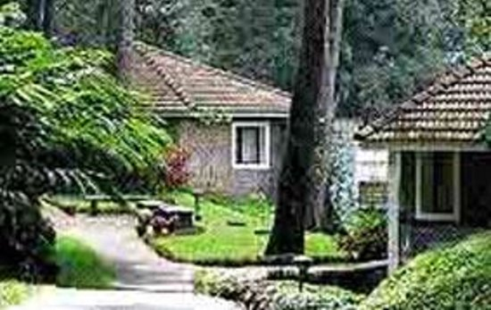 Munnar Tourist Home