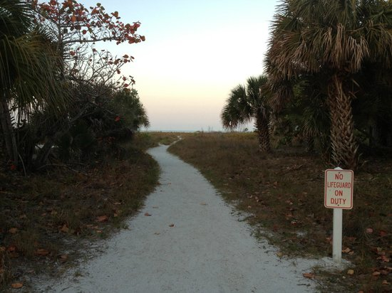 Sea Spray Resort on Siesta Key: Path to Siesta Key beach access #10