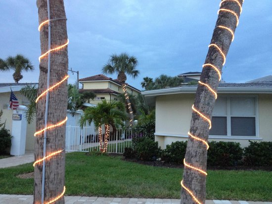 Sea Spray Resort on Siesta Key: White lights on palm trees light up at night (April 2013)