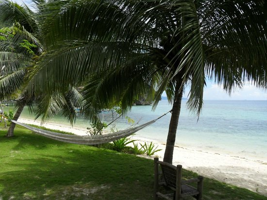 ‪‪Sangat Island Dive Resort‬: Beachfront‬