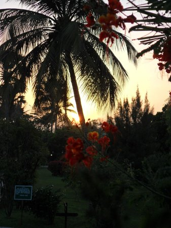Kairaba Beach Hotel: View of the gardens