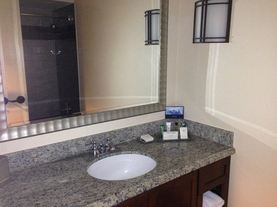 Hilton Phoenix East / Mesa: Bathroom