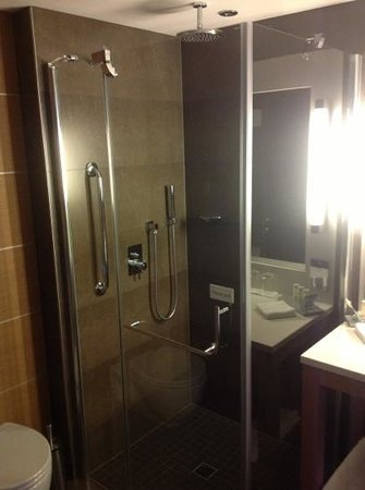 Radisson Blu Royal Hotel, Dublin: Shower Room 210