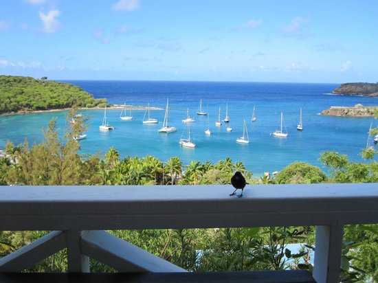 Blue Moon Antigua: View from upper villa