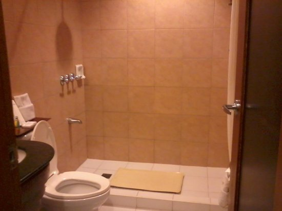 Microtel Inn &amp; Suites by Wyndham Boracay: Our Bathroom
