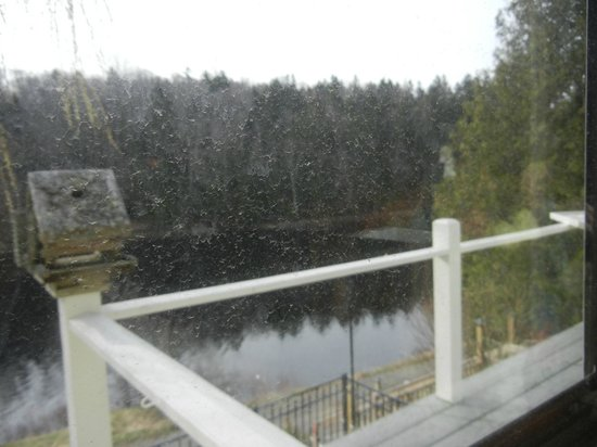 East Machias, ME: View from dining area