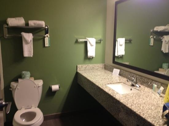 Sleep Inn &amp; Suites Downtown Inner Harbor : nice large bathroom 