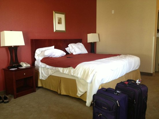 Holiday Inn Express Hotel & Suites Los Angeles Airport Hawthorne: Big bed and working lamps, alarm clock/radio