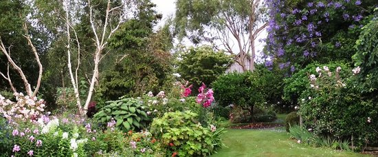 Walk through the garden to Kamahi Cottage