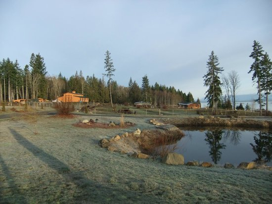Two Eagles Lodge: The pond and a view of the farmland on this property