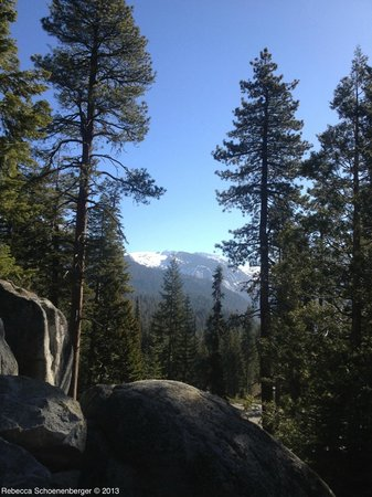 Wuksachi Lodge &amp; Village: Sequoia Kings Canyon National Park, Wuksachi Lodge