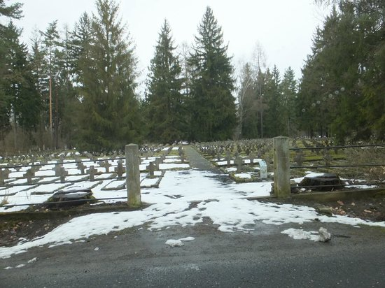 Southern Poland, Poland: Nearby Russian cemetery.