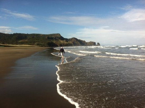 Bethells Beach Cottages: Gorgeous beach
