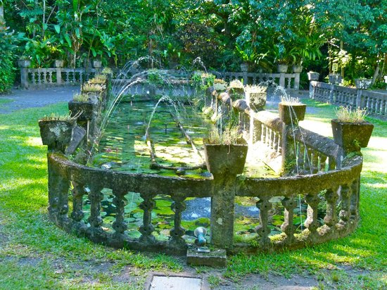 Mena Creek, Avustralya: The fountain garden