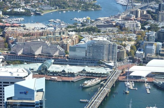 Ibis Sydney Darling Harbour: View of Hotel from Sydney Tower