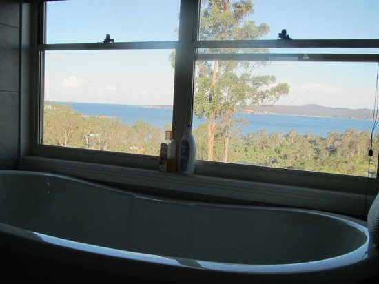 Whale Cove B&amp;B Eden: View from the bathroom