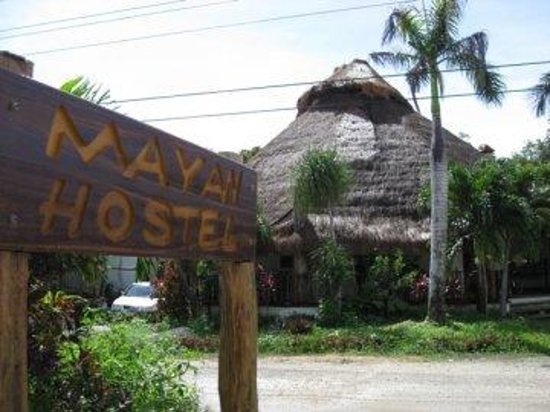 Photo of Tulum Hostel