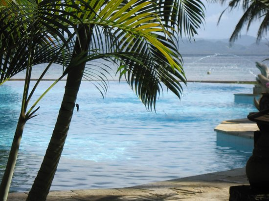 Gangga Island Resort & Spa: Infinity pool