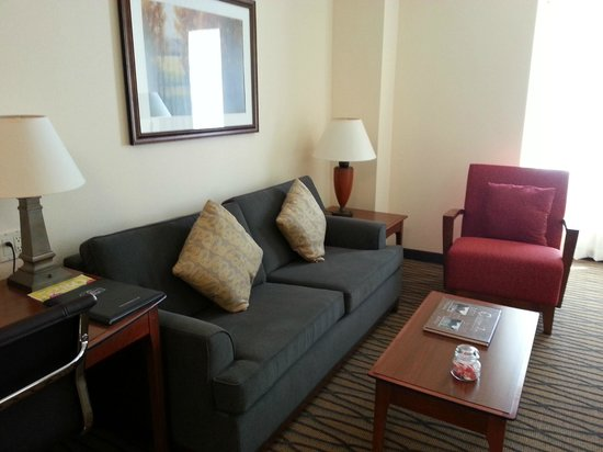 Residence Inn Denver City Center: Living room