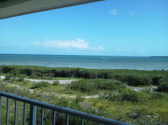 Ocean Pointe Suites at Key Largo: The view from the room