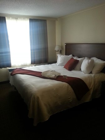 BEST WESTERN PLUS Guildwood Inn: Room on 2nd floor