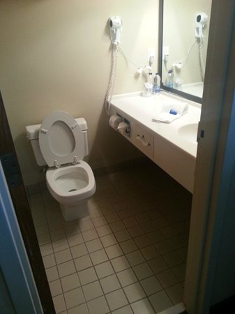 BEST WESTERN PLUS Guildwood Inn: Bathroom