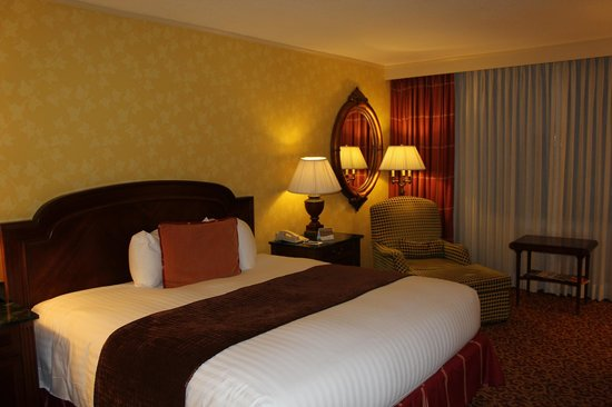 InterContinental New Orleans: Vue Chambre 2