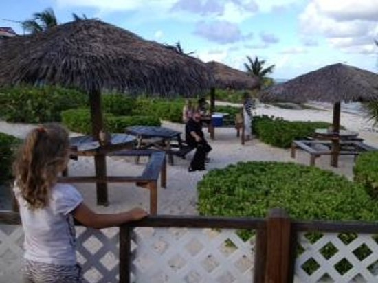 Bodden Town, Большой Кайман: Thatched roofs over picnic tables by the sea at Grape Tree