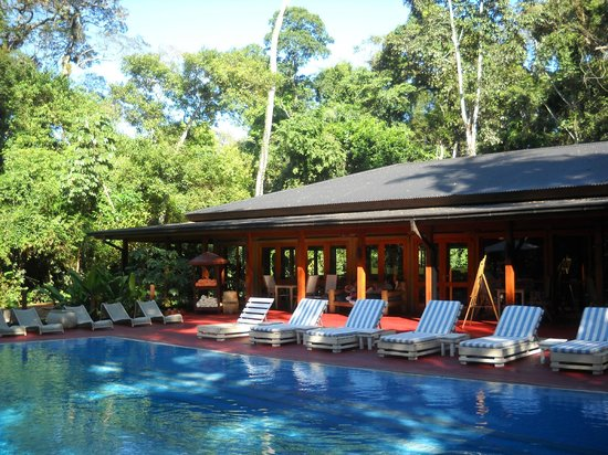 La Cantera Jungle Lodge : Relaxing pool in the jungle 