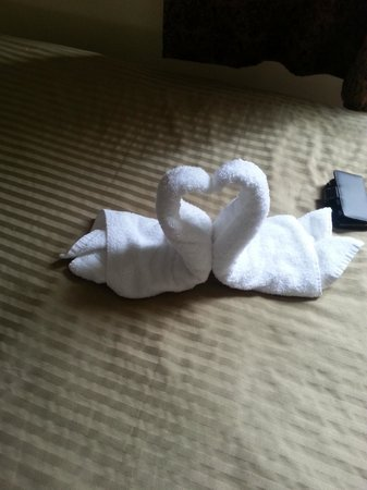 Baldwin Hotel: Towel Animal (Two swans)