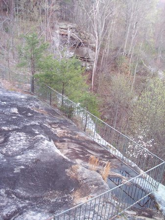 Monterey, TN: More Natural Scenery off the back deck