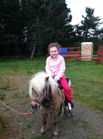 Long Beach, WA: first time on a horse!