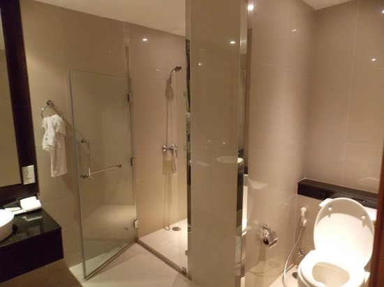 Viva Garden Serviced Residence: Shower