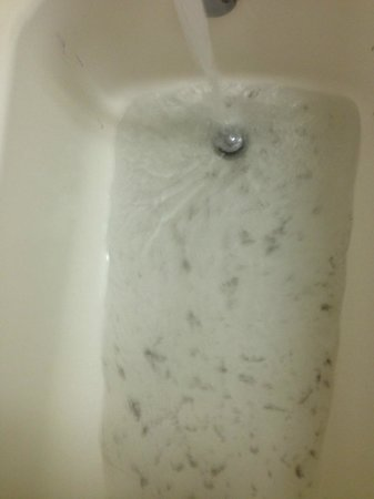 Microtel Inn & Suites by Wyndham Philadelphia Airport: filth from AC filter in the tub